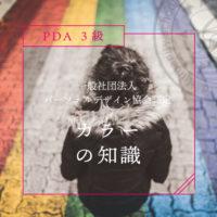グレースアカデミー PDA3級講座 *基礎講座*